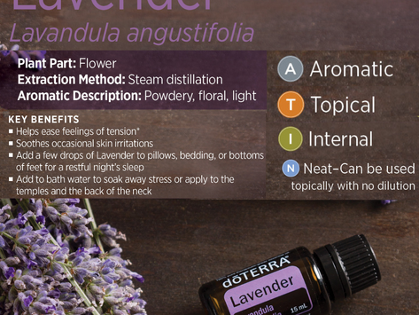 Need help with Sleep? Try these 3 Essential Oils