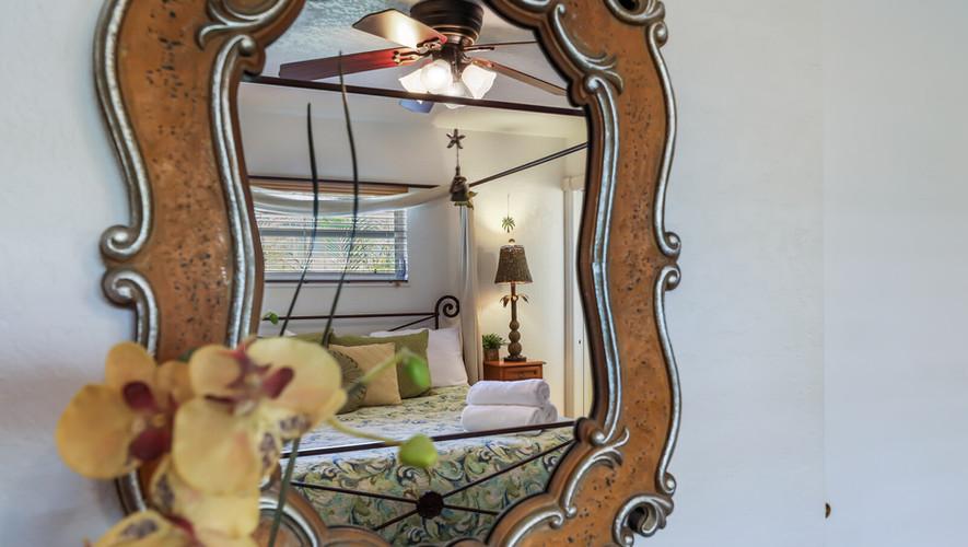 Bird of Paradise mirror