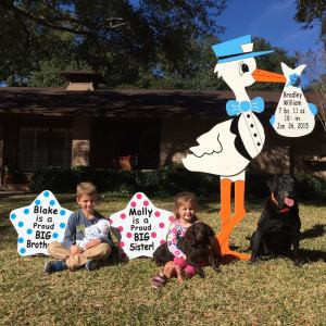 stork sign, yard, children, dog