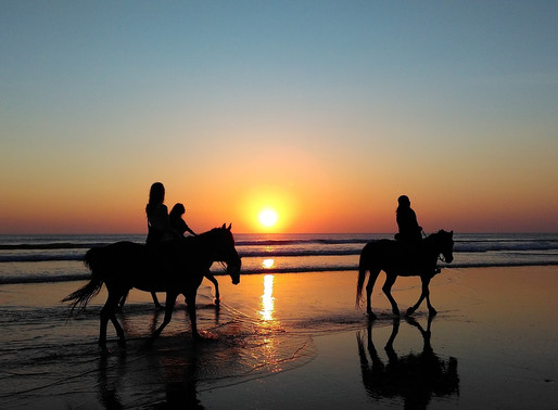 Horseback Riding Cape San Blas