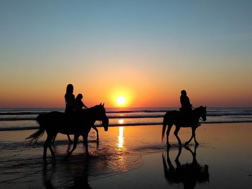 Horseback Riding Cape San Blas
