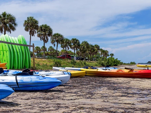 St Joseph Bay by Kayak or Paddle Board