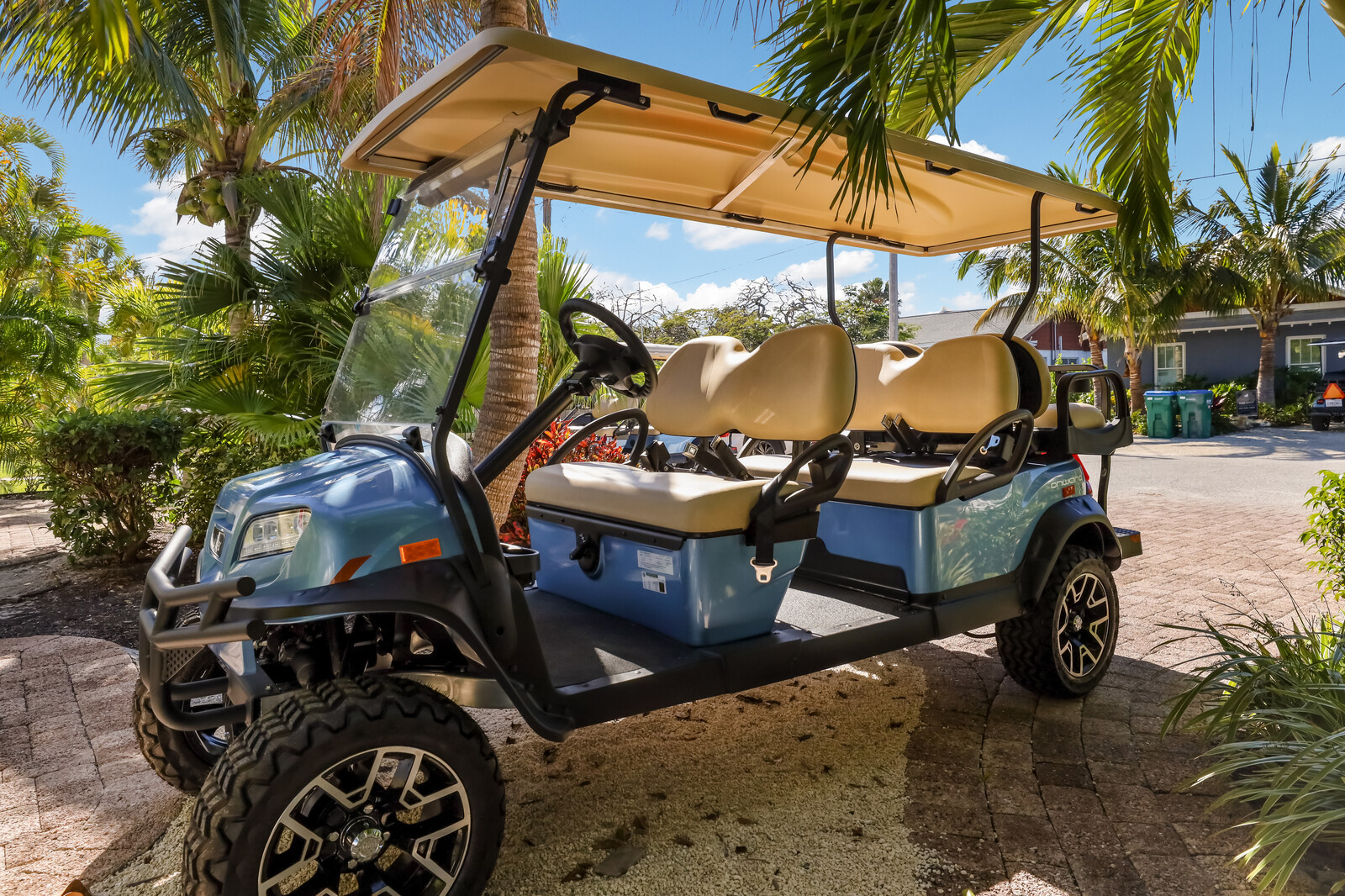 Gas powered golf cart for 6