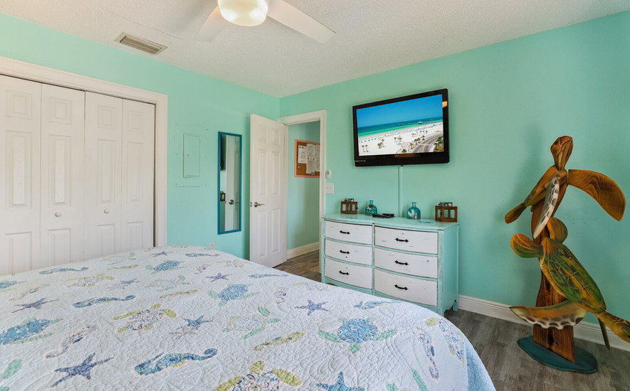 Master Bed and Cable TV