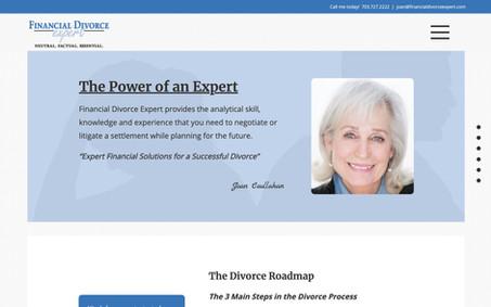 Financial Divorce Expert