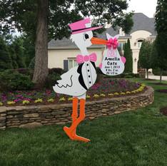 Pink Stork Girl