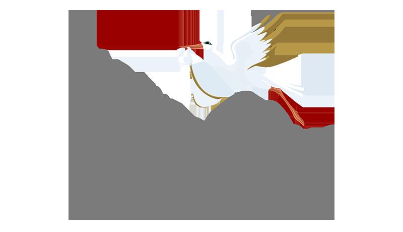 Birthday And Stork Yard Sign Rentals Blog The Stork Lady