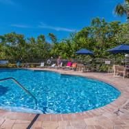 Pelican pool 2.jpg