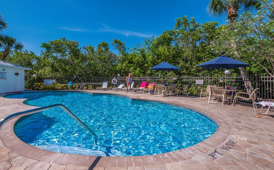 Pelican pool 2