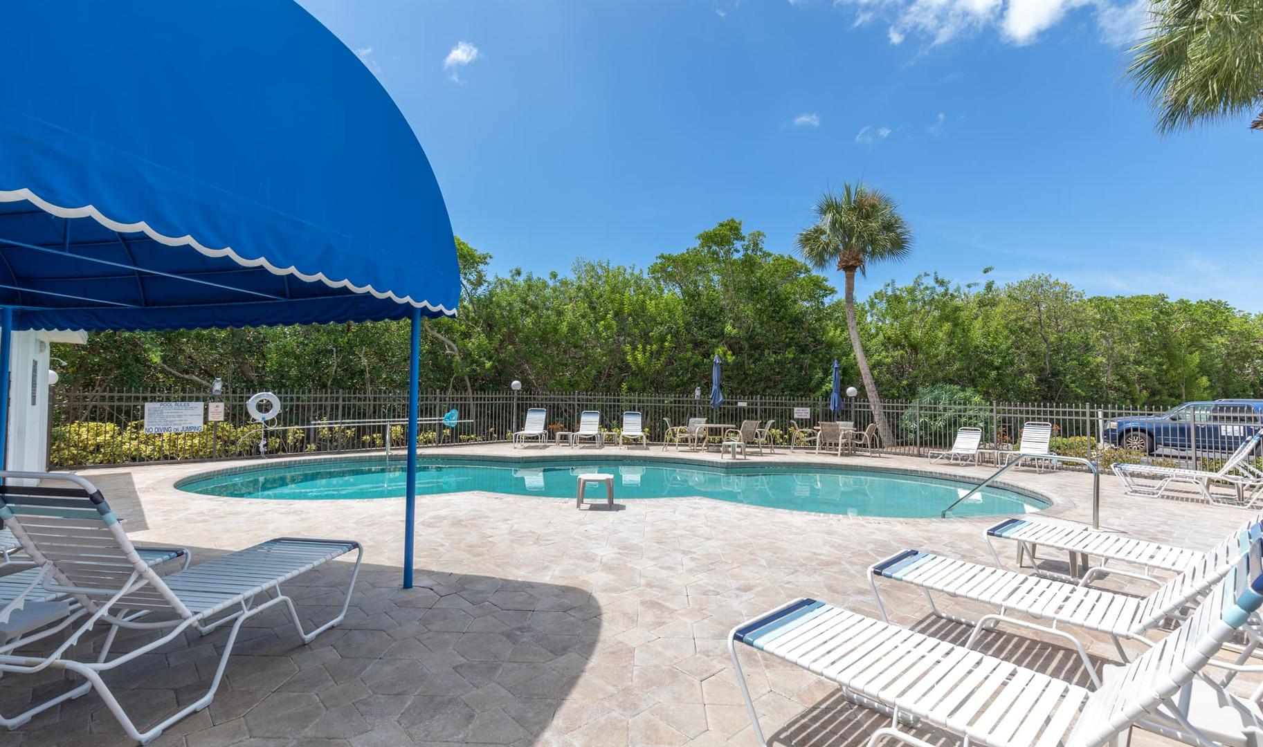 Beautiful heated pool
