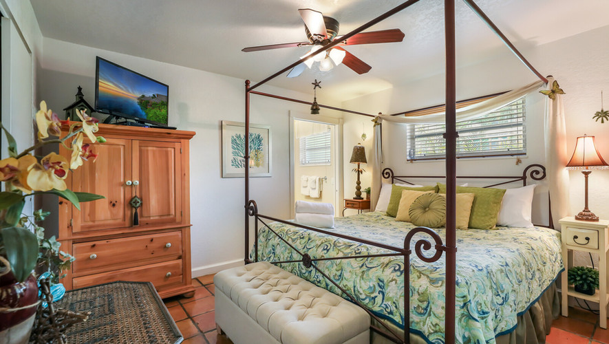 Bird of Paradise gorgeous King suite
