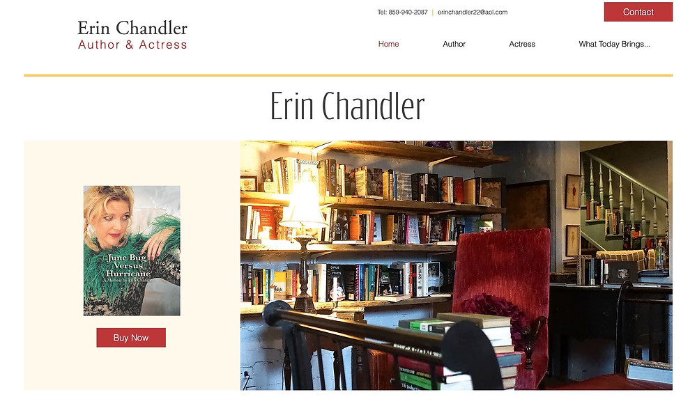 Wix website design for the author and actress Erin Chandler.