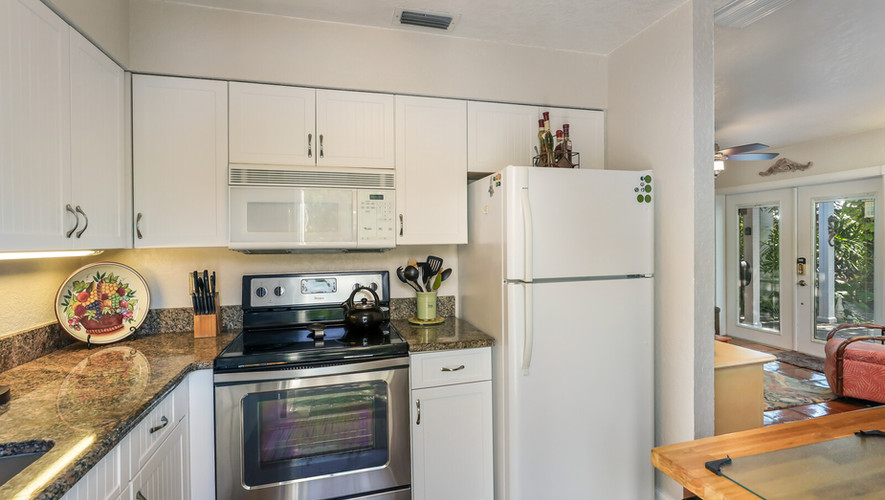 Bird of Paradise kitchen and dishwasher