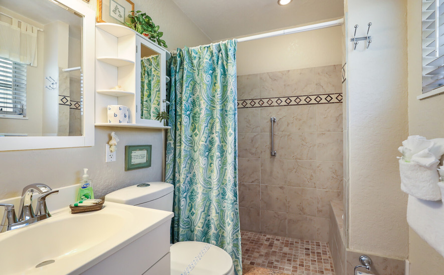 Bird of Paradise master bathroom