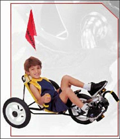Mini T-Bike