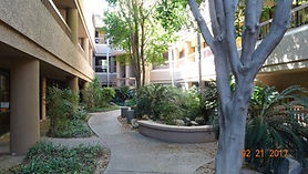 A lush, shady breezeway complete with mature trees in the middle of a beige office building.