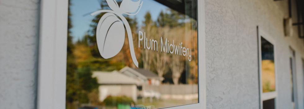 Plum window