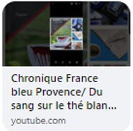 chronique2.jpg