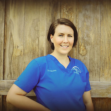 dr amanda chang chan chung chong dvm vet doctor equine horse acupuncture chiropractic chiropractor
