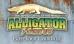 alligator adventure north myrtle beach sc zoo animal vet