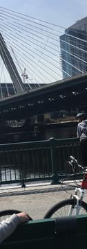 The Zakim Bridge offers a scenic backdrop for a quick break.