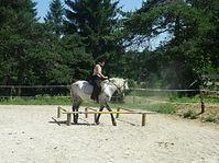 Camp equitation printemps zone A (56).JP