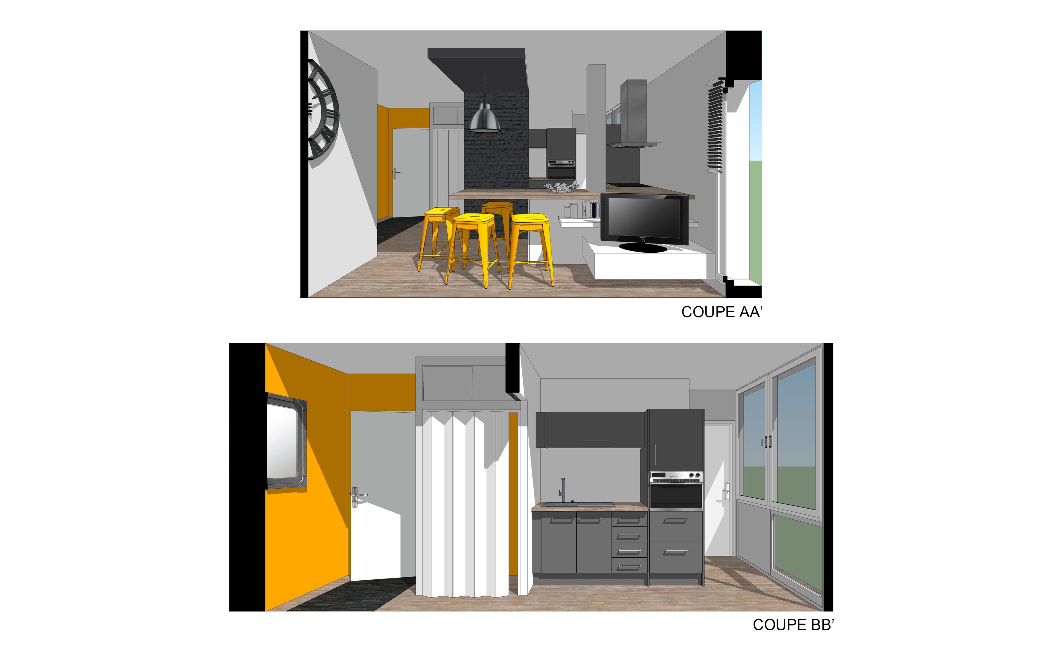 coupe 1 projet restructuration salon cuisine
