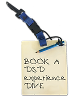 BOOK DSD.png