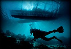 Portulano Boat and Diver copy