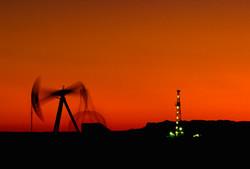 New Mexico Oil