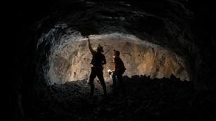 Gold Mine Vein