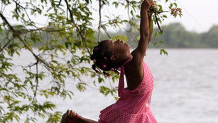 Suriname Swingset