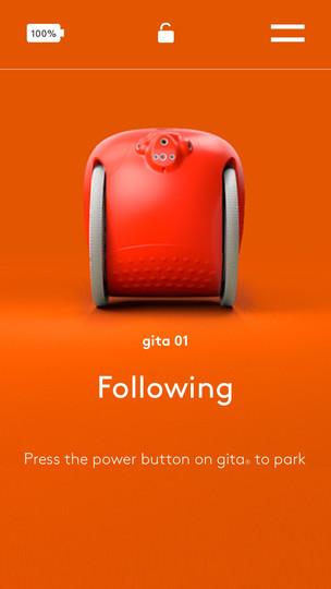 Following_.jpg