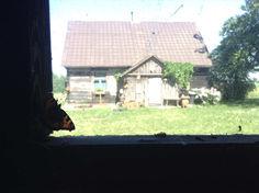 Butterfly & Cabin