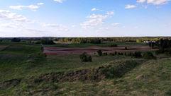 Fields with yields