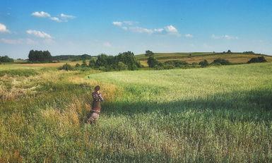 Fields of Krasnopol