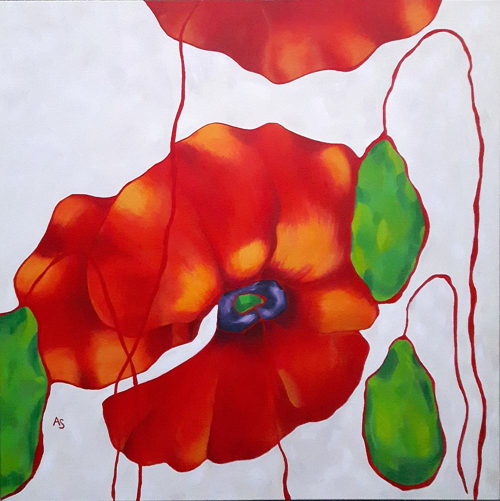 red poppy flower pod