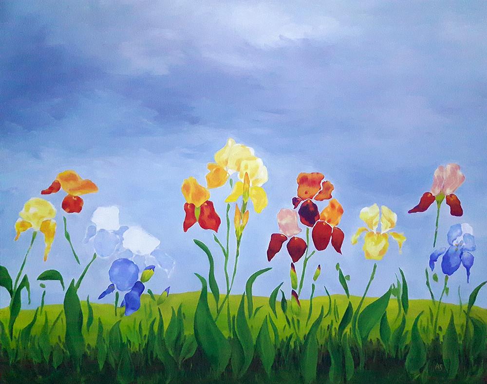 iris field meadow landscape