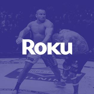 Provider_Roku.jpg