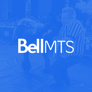 Provider_Bell-MTS.jpg