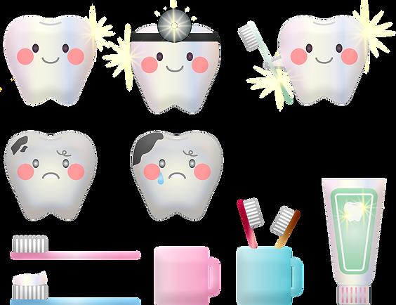 teeth-hygiene tannlege fredrikstad