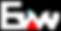 EVAN logo_W.png