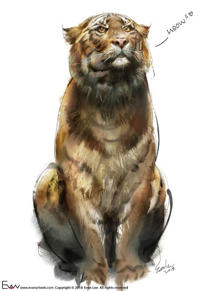 Episode 23-Bengal tiger