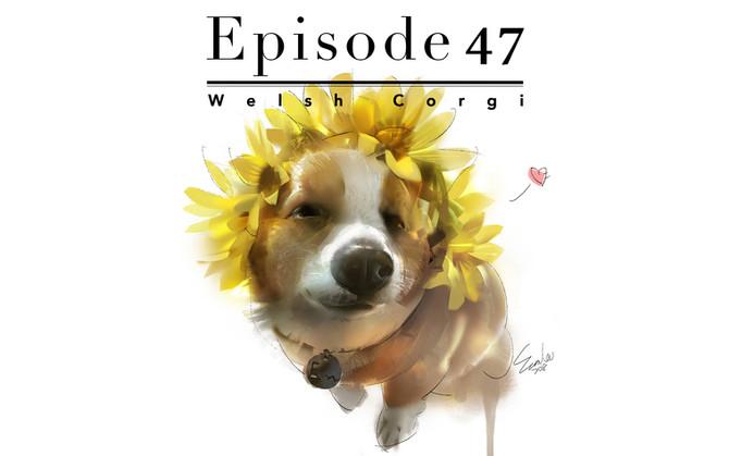 Episode 47-Welsh Corgi