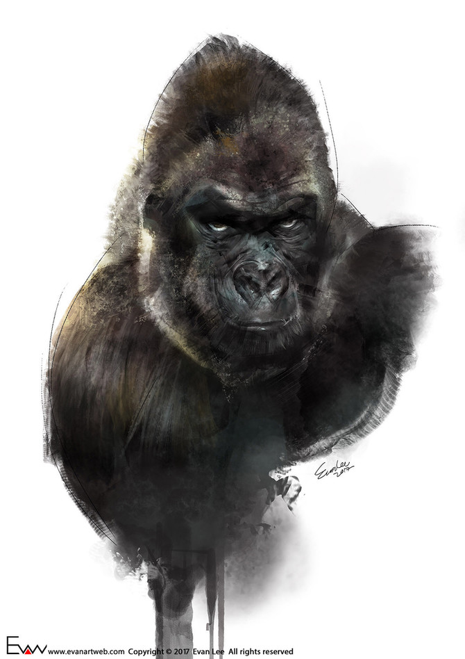 Episode 17-Gorilla