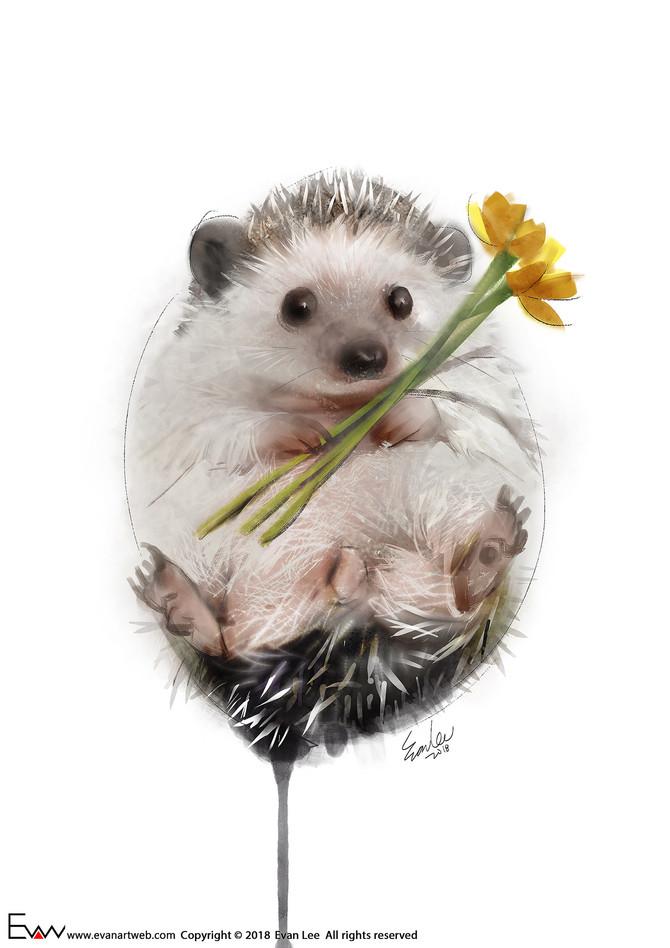 Episode 25- Little hedgehog