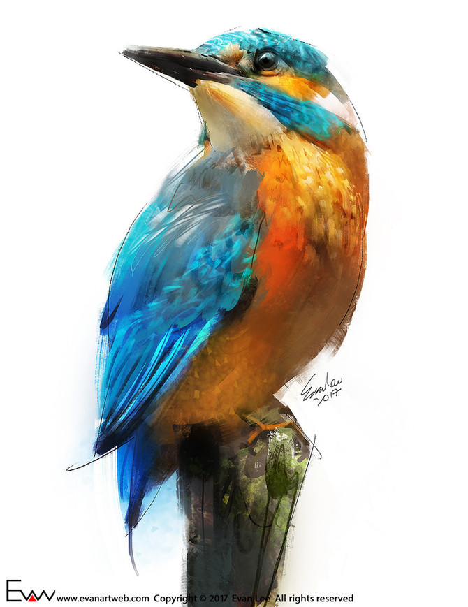 Episode 19-Kingfisher