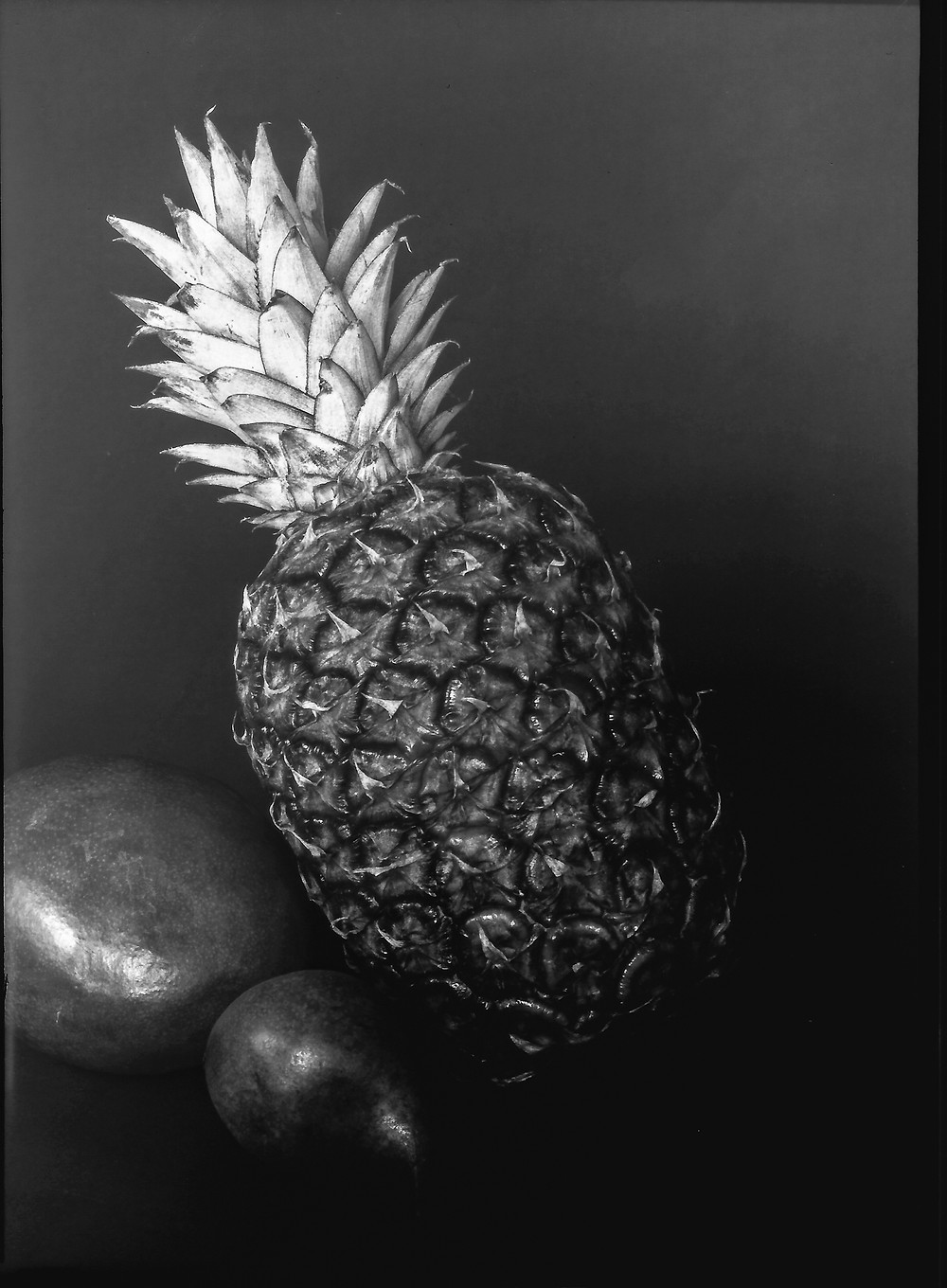 Pineapple-WP-1