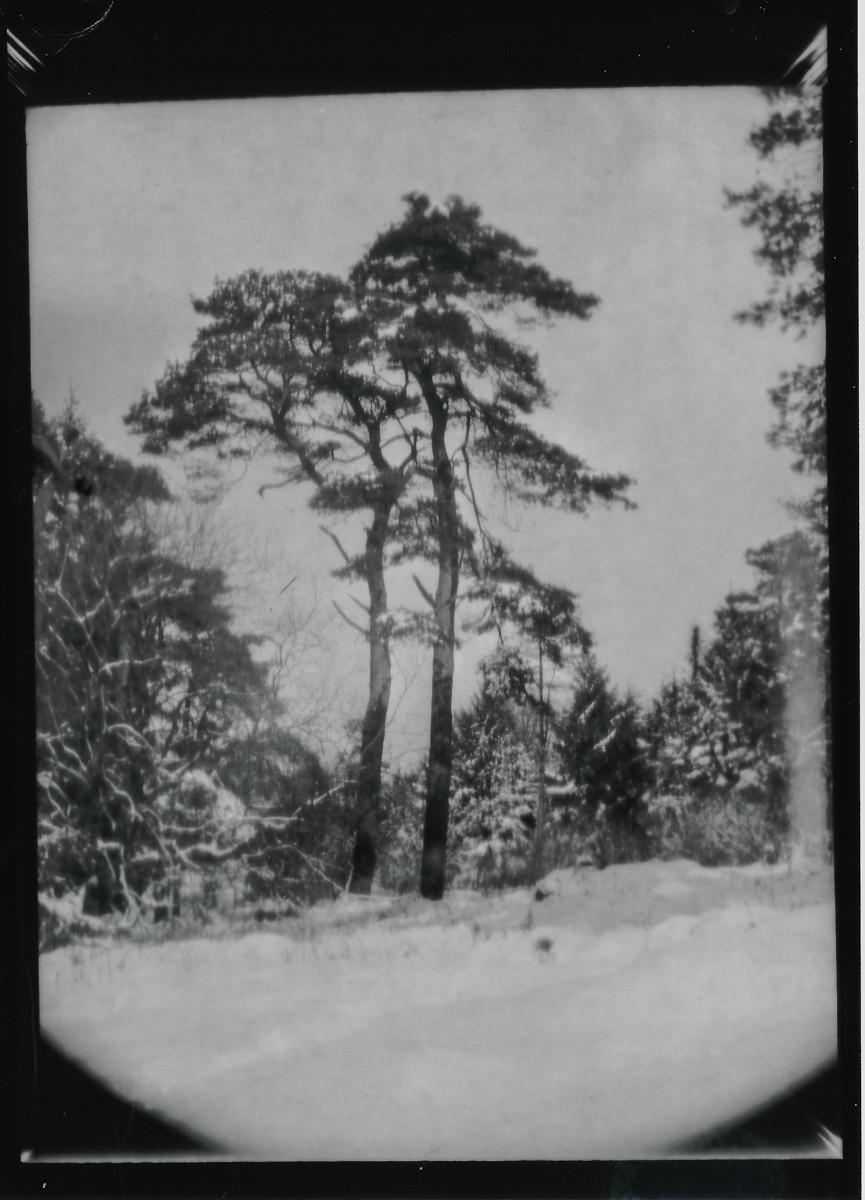 Mendip-Snow-ThorntonPickard-WP-4