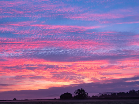 Another colourful start to the day